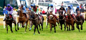 Dingle Races by Barbara Walsh