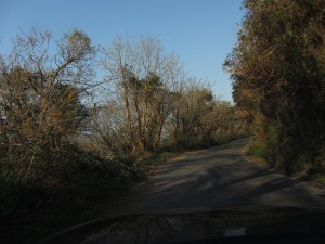 Narrow Road Valentia Island