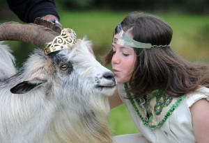 Puck Fair queen kissing king goat
