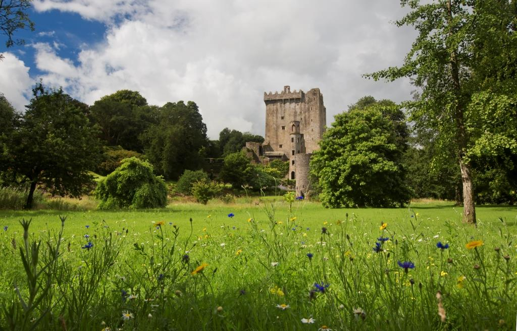 Small escorted tours of ireland