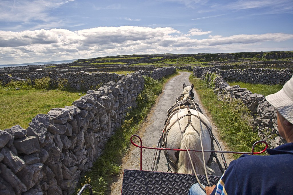 Aran Islands Horse and Trap