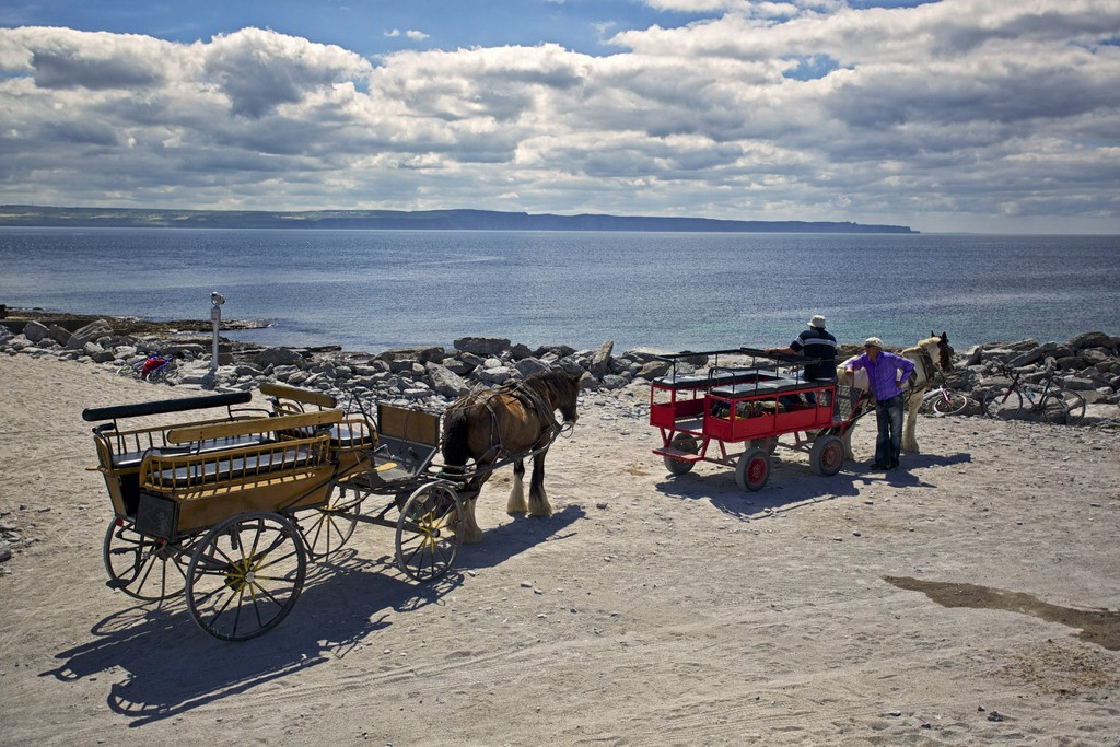 Horse and Trap, Inisheer (Inis Oirr), Aran Islands