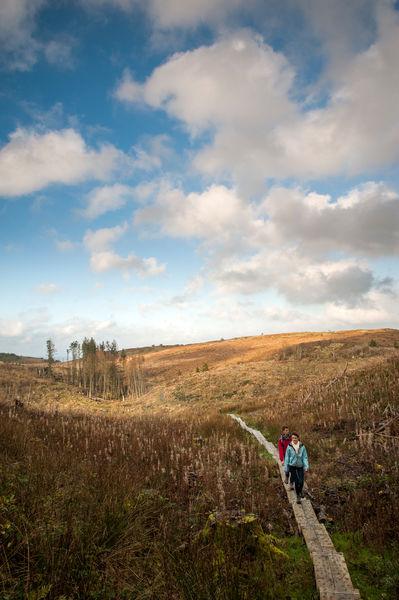 Cavan Burren Park Ireland's Ancient East